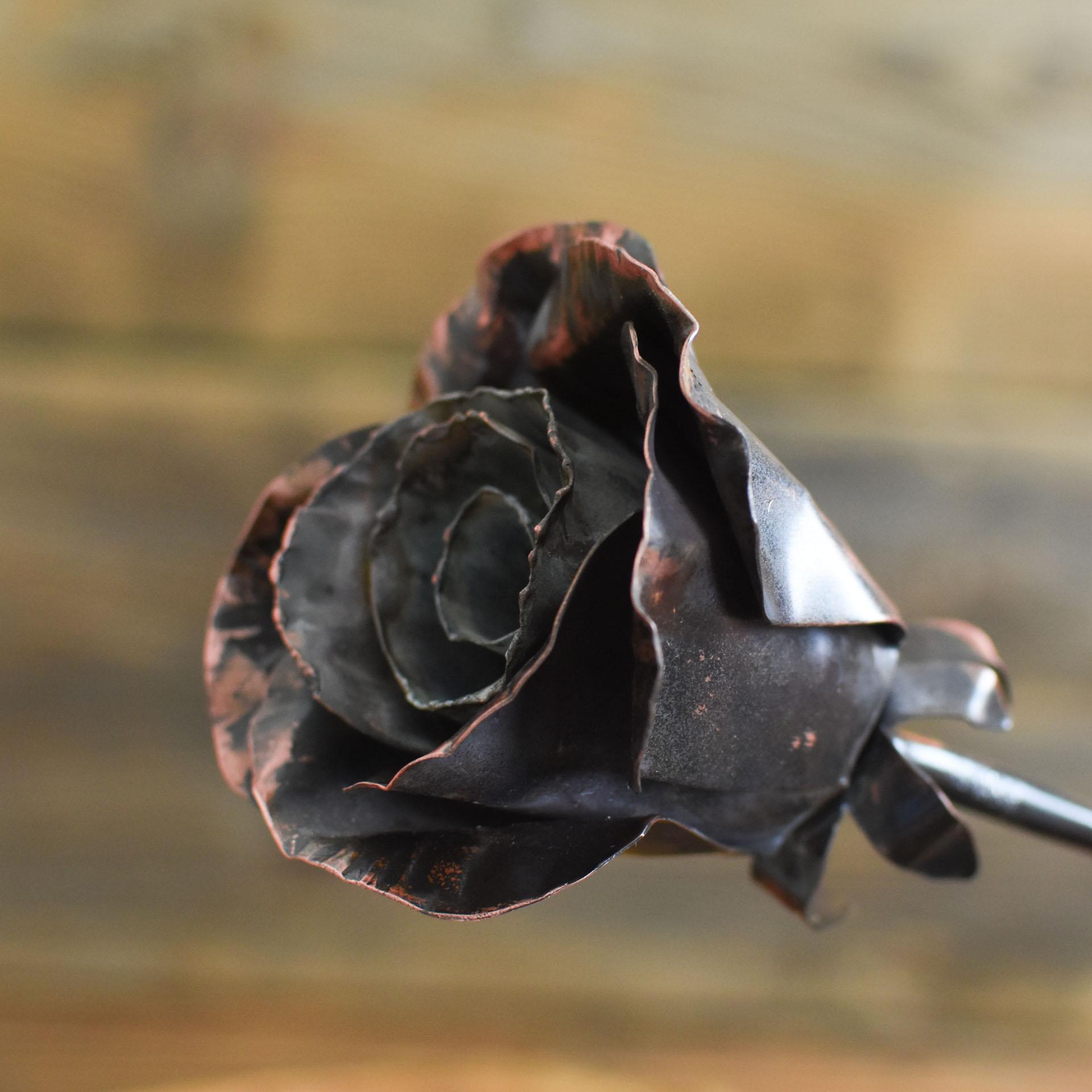 róża miedziana